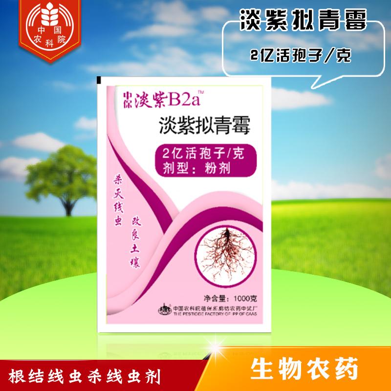 中保 淡紫拟青霉B2a 防根结线虫病 杀线虫剂 1000g*12袋
